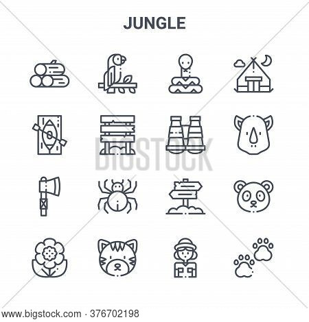 Set Of 16 Jungle Concept Vector Line Icons. 64x64 Thin Stroke Icons Such As Parrot, Canoe, Rhinocero