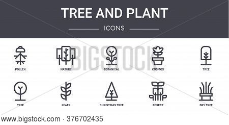 Tree And Plant Concept Line Icons Set. Contains Icons Usable For Web, Logo, Ui Ux Such As Nature, Co