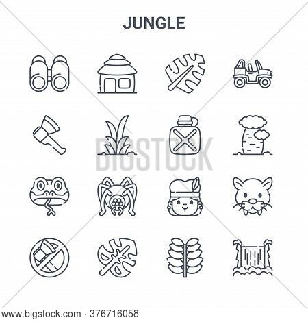 Set Of 16 Jungle Concept Vector Line Icons. 64x64 Thin Stroke Icons Such As Hut, Axe, Tree, Aborigin