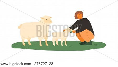 Farmer Female Feeding Lamb And Sheep By Green Grass Vector Flat Illustration. Smiling Woman Agricult