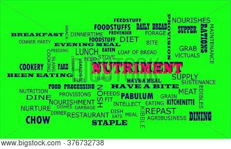 Nutriment Human Body Nutritional Terminology Presented With Word Cloud Vector Illustration On Colorf