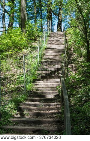 Forest Trail, Hiking Trail In Neandertal With Steep Stairs