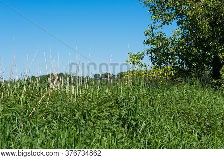 Nature Landscape On Small Hills And Blue Sky With Cloudn