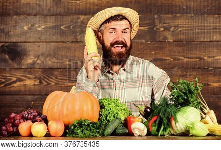 Farmer Presenting Organic Homegrown Vegetables. Grow Organic Crops. Community Gardens And Farms. Hea