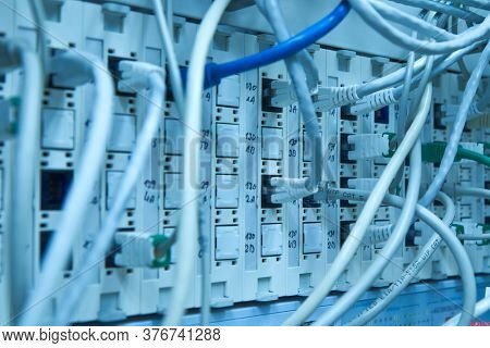 ethernet cables maze connected to switch