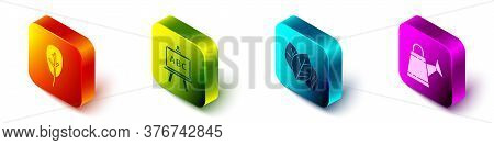 Set Isometric Leaf Or Leaves, Chalkboard, Leaf Or Leaves And Watering Can Icon. Vector