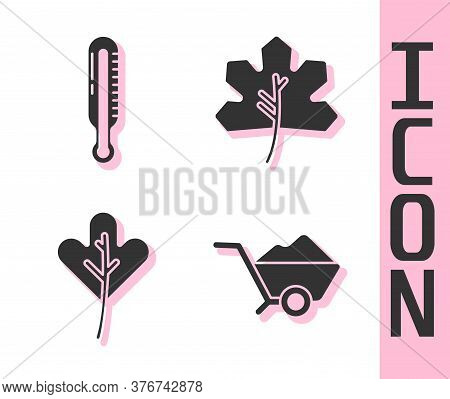Set Wheelbarrow With Dirt, Meteorology Thermometer, Leaf Or Leaves And Leaf Or Leaves Icon. Vector