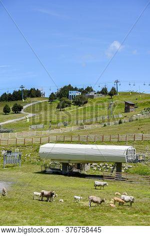 Grandvalira El Tarter : 2020 16 July : Shelter In Andorra, Refugi De Riba Escorjada In El Tarter On