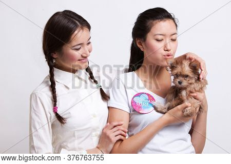 Young female friends holding a small puppy against white background