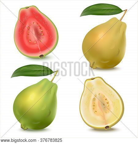 Set Of Realistic Illustration Of Yellow And Green Guava. Fresh Whole Guava With Leaves And Half Guav