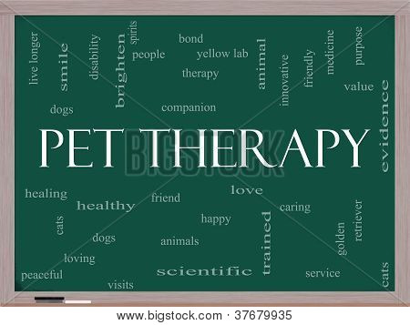 Pet Therapy Word Cloud Concept On A Blackboard