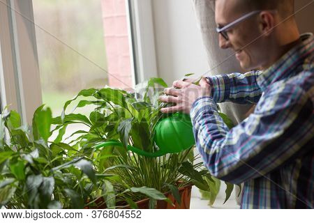 Freelancer Taking Care Of Home Plants At Working Space At Home. Man Watering Flowers From Plastic Wa