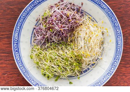 Three Colors Alfalfa Served On A Chinese Plate