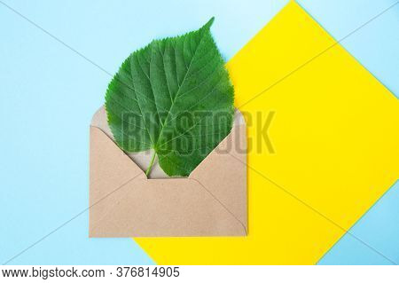 Green Sheet Of Linden In An Envelope From Kraft Paper On A Sky Blue And Yellow Background. Eco-frien
