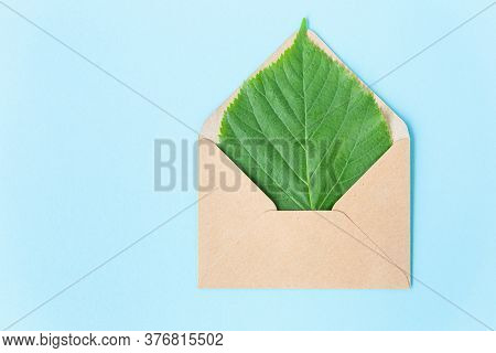 Green Sheet Of Linden In An Envelope From Kraft Paper On A Sky Blue Background. Eco-friendly, Recycl