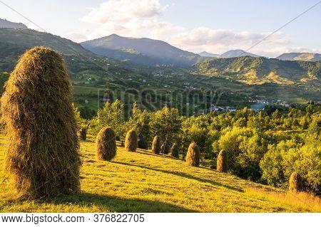 Beautiful rural landscape in summer light.