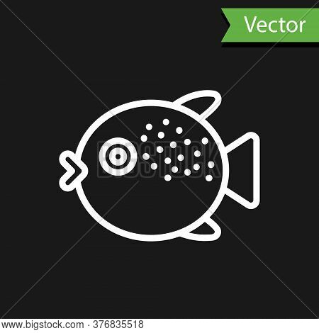 White Line Puffer Fish Icon Isolated On Black Background. Fugu Fish Japanese Puffer Fish. Vector.