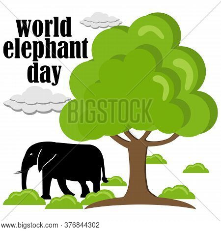 World Elephant Day. Templates For Backgrounds, Banners, Cards, Posters With Elephant Icons And Text