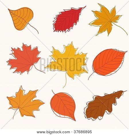 Set of autumn doodle leaves