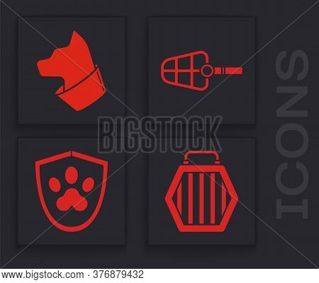 Set Pet Carry Case, Cat, Dog Muzzle And Animal Health Insurance Icon. Vector