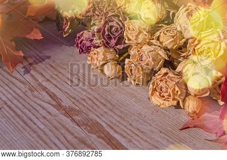 Dried Bunch Of Rose Flowers