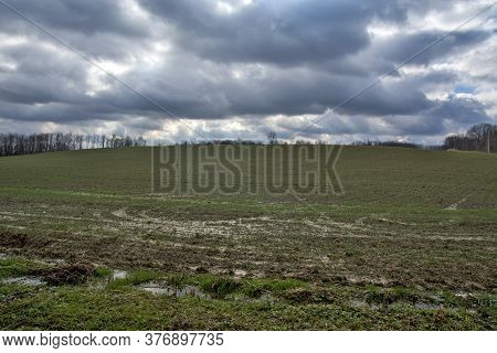 A Field Under A Crop That Has Just Emerged Full Of Water After Heavy Rain. Black Clouds Announce Mor