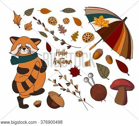 Vector Set Of Autumn Icons: Red Panda, Falling Leaves, Cozy Food, Nuts, Mushrooms And Pumpkin. Scrap