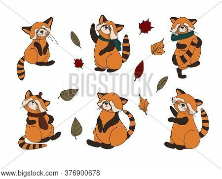 Little Panda, Red Panda, Cat Bear. Character Cute Beast. Funny Animals. Autumn Decoration. Vector Il