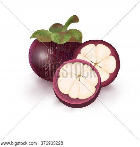 Realistic Fresh Mangosteen Fruit For Healthy Eating Isolated On White Background. 3d Whole And Cut I