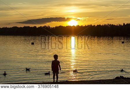 Sunset On The Lake In The Summer Heat Ashore Silhouette Child
