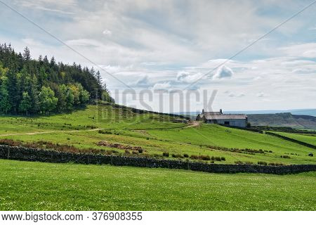 A Rural Farmhouse On A Slope In Northumberland