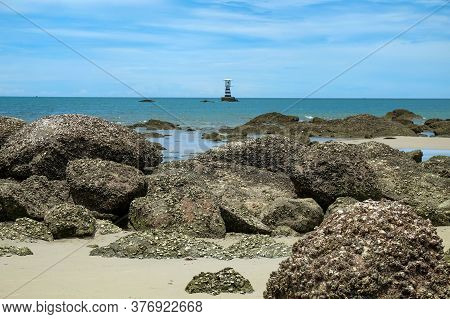 Scenic Ocean View To Wild Rocky Beach After Low Tide With Many Outgrowth Fouling Colonies Of Sea Org