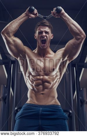 Bodybuilder Strong Man Pumping Up Triceps Muscles
