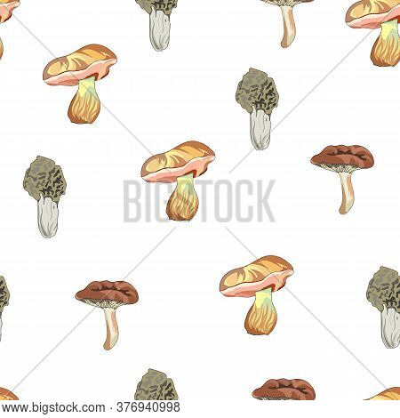 Seamless Mushroom Pattern. Drawn Mushrooms On A White Background. Toadstools, Chanterelles, Honey Mu