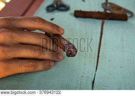 Man Holding Cigar And Tobacco Leaves. Traditional Process Of Making Cigars In Close-up. The Valley O