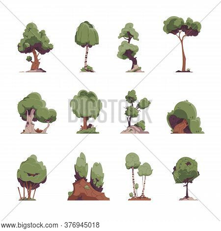 Cartoon Trees. Flat Fairytale Detailed Graphic Elements, Oak Willow Birch Trees For Game Environment