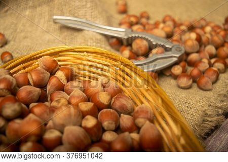 Hazelnuts In A Wicker Basket, A Scattering Of Hazelnuts And A Nutcracker On The Background Of Burlap