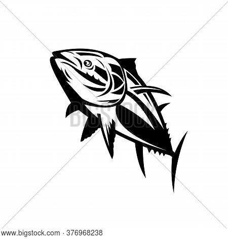Retro Style Illustration Of A Atlantic Bluefin Tuna, Thunnus Thynnus, Northern Bluefin Tuna, Giant B