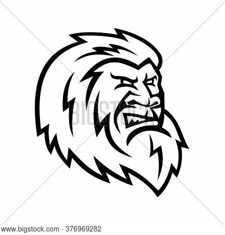 Mascot Icon Illustration Of Head Of A Yeti Or Abominable Snowman, An Ape-like Entity, Mythical Or Le