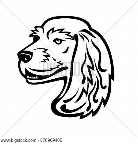 Black And White Illustration Of Head Of A English Cocker Spaniel, A Breed Of Flushing Dog Looking To