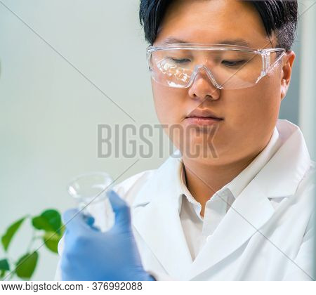 Scientist Working In Lab. Doctors Making Medical Research. Laboratory Tools: Microscope, Test Tubes,
