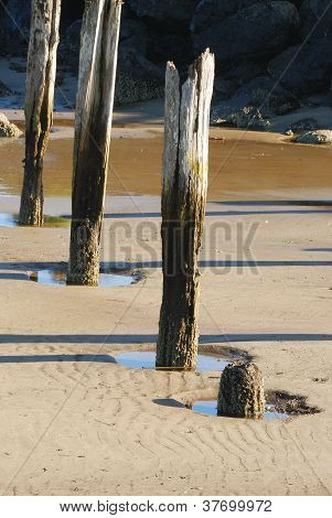 Cannery Pier