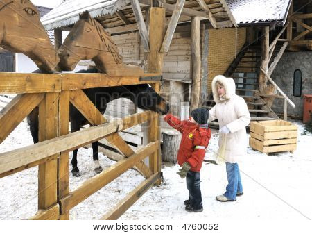 Mother And Two Sons Feed A Horse In Winter