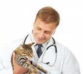 Vet with a cat isolated over a white background poster