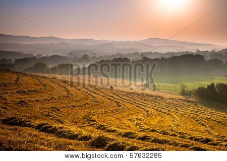 Tuscan Countryside At Dawn With Haze