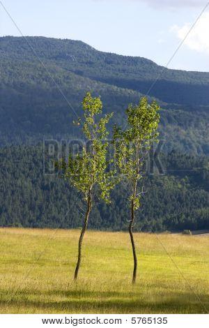 Beautiful, Untouched Nature, Surrounding Satorsko Lake In The Western Regions Of Bosnia And Herzegov