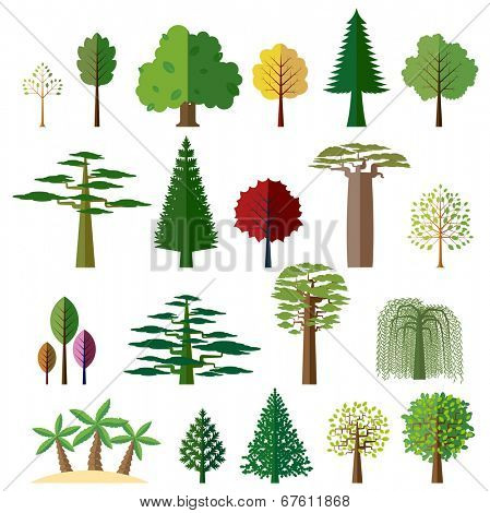 Various types of deciduous and evergreen trees. Set of flat vector icons.
