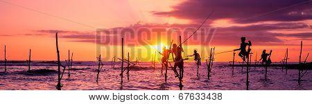 The Traditional Stilt Fishermen in Srilanka