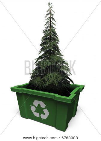 Tree in recycle bin