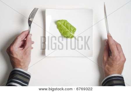 Plate With Green Leaf